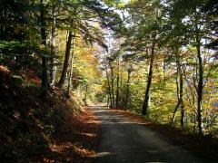 Un automne à Vanosc