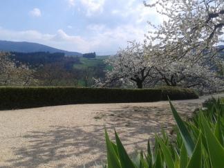 A l'entrée des jardins de la Maison St-Joseph, la ballade est fleurie !