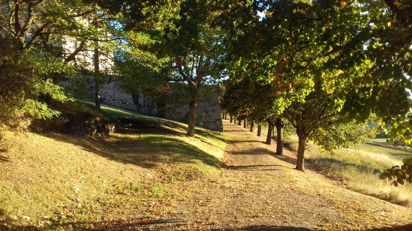 Promenade Maison St Joseph de Vanosc-Centre spirituel ignatien